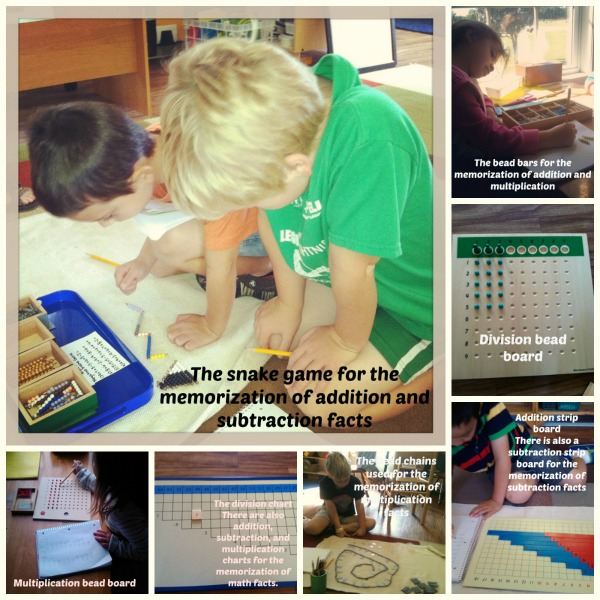 PicMonkey_Collage_math_facts_2
